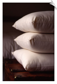 "Standard Bed Pillow, Light Fill (20"" x 25"")"