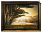 Arise, Shine Framed Christian Artwork
