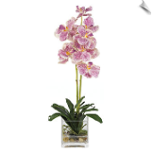 Vanda Artificial Orchid w/Glass Vase