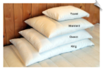 Organic Pillows